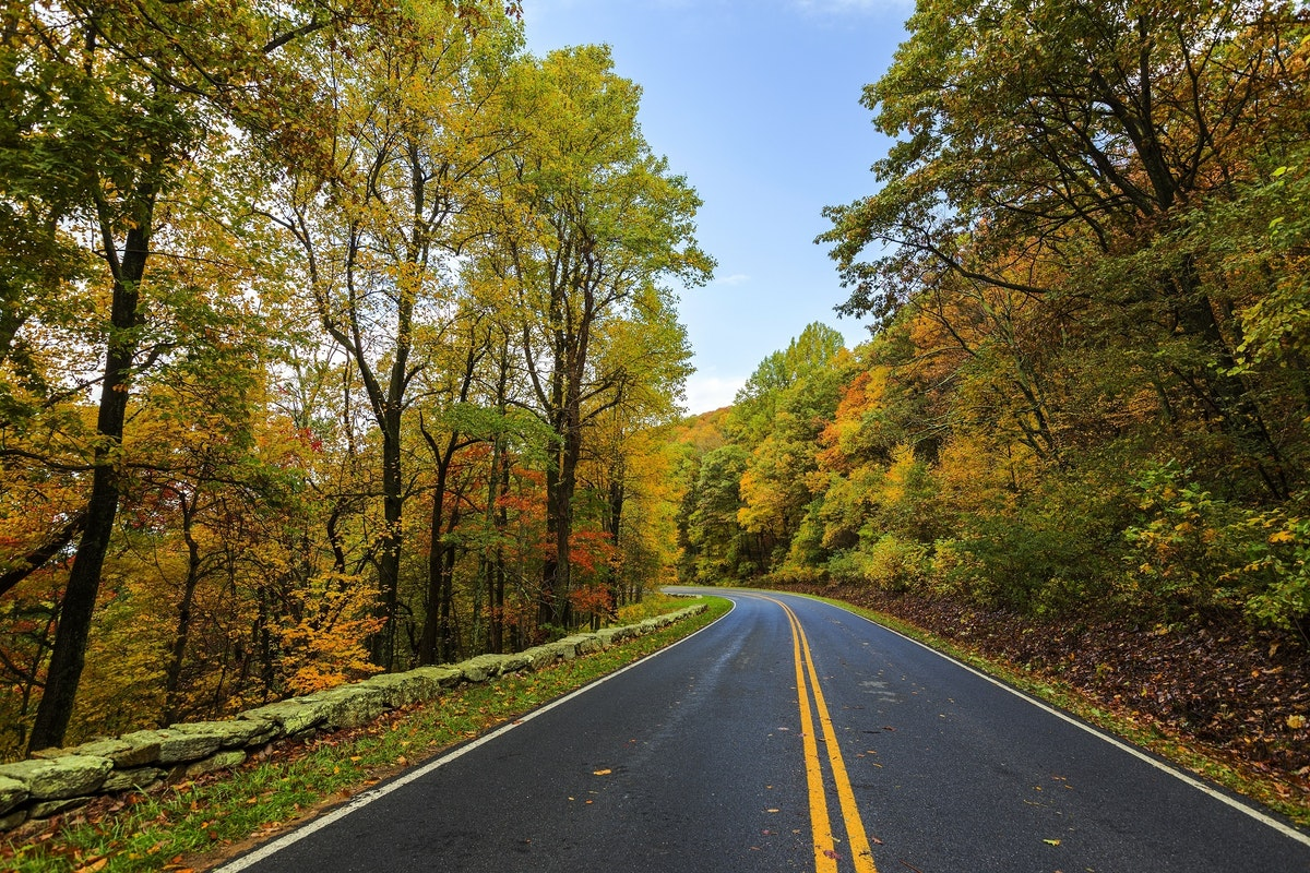What You Need to Know about Asphalt Maintenance